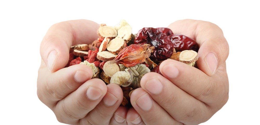 Education Herbal Medicine at Shenzhou Open University of TCM. Chinese Herbs in hands.