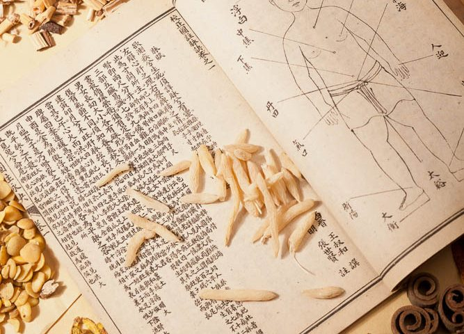 Fundamentals of Traditional Chinese Medicine